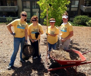 Ventura County Team Members Cleaning Up the Conejo Valley Botanical Garden