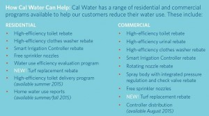 cal-water-can-help