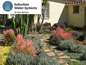 Suburban_Landscape_Presentation2